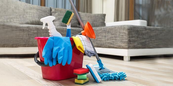 ev temizleme